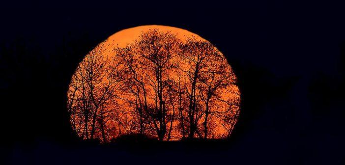 The Autumn Equinox: The Dark Season